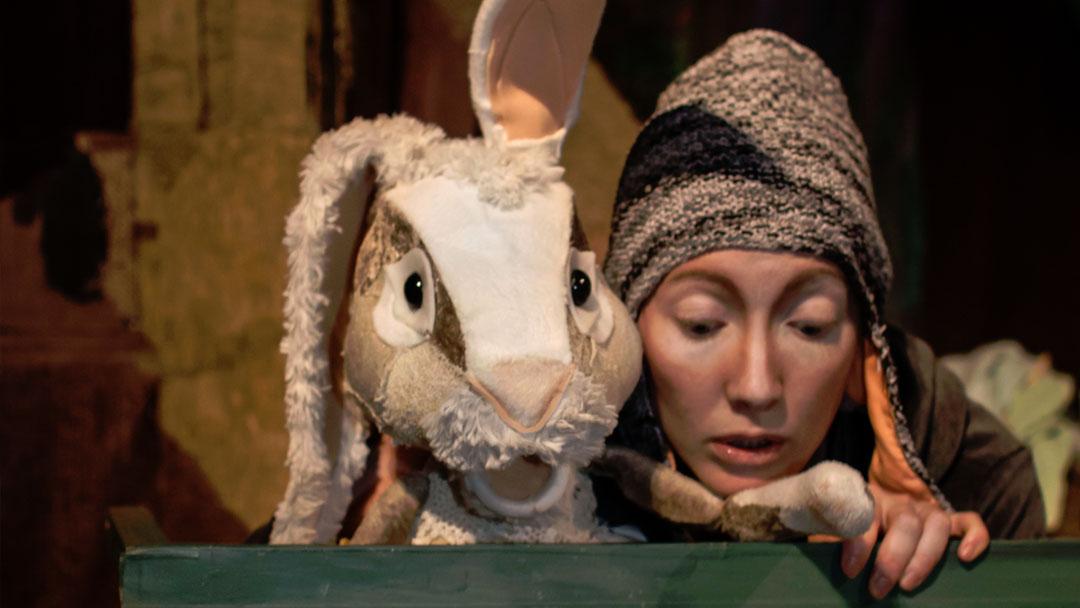 Min lillasyster Kanin